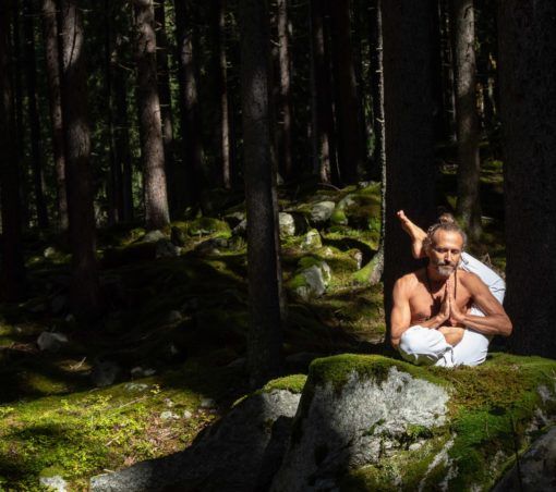 Pascal Tournaire Hubert de Tourris Yoga Hamsa Sattva Yoga Chamonix cours stages formation Ashtanga Vinyasa Hatha Yin montagne neige nature